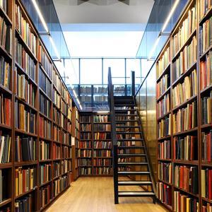 Библиотеки Дно