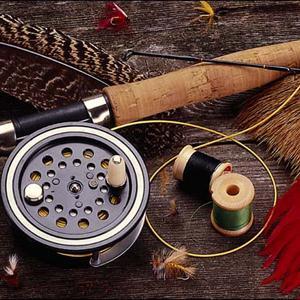 Охотничьи и рыболовные магазины Дно